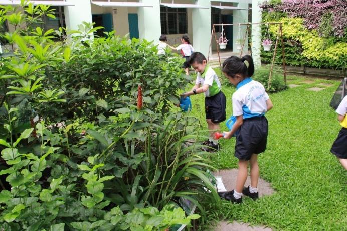 "Primary 1 students at Anchor Green Primary School ""adopt"" a part of the school's eco-garden and help to look after the plants there."